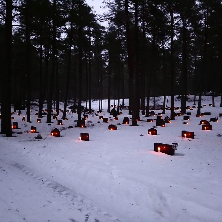 Küünalde asetamine Tallinna Metsakalmistule