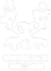Wren bird in antler tree with roots and flowers. Logo for Wrenegade Wellness, Arcata CA. Logo designed by Northern California Branding Consultant, Layla Ann Lugo
