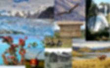 collage_images_activités_v2.jpg