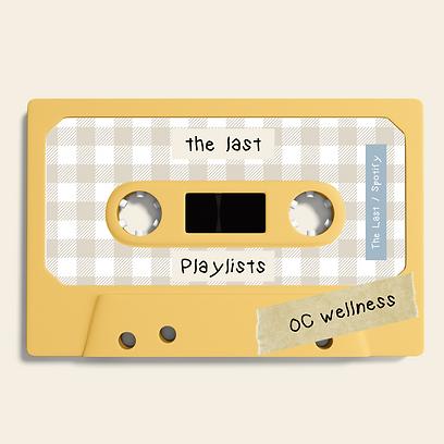 The Last Casettes - playlist.png