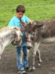 Kinder Stärken, Pferde Stärken, Esel Liesi und Lotti, Therapiezentrum Gramatneusiedl