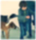 Andrea Keglovits-Ackerer, Marcella Bolaffio, Sonja Breier, Olivia Machal, Monika Schumacher, Claudia Maranda, Katrin Göschl-Elian, Jürgen Nadler, Marion Floh, Tatjana Pekar, Tatjana Waloch,