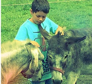 Kinderstärken Pferdestärken Therapiezentrum Gramatneusiedl Autismus
