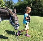 Kinder Stärken, Pferde Stärken, Esel Lotti, Therapizentrum Gramatneusiedl