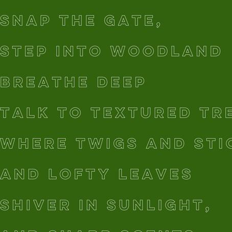 Woodland - Helen Ivory