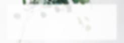 Monochrom Landschaft Tumblr Banner.png