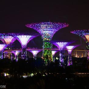 Que hacer gratis en Singapur