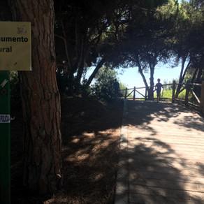 Tag 117 | Marbella, ES  Raphael lernt schwimmen