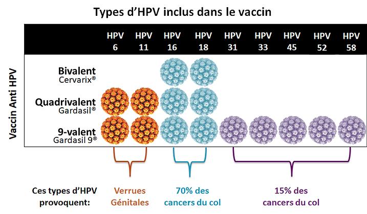 Schéma_différents_vaccins.png