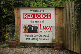 Lucy-pet-carer red lodge royal wootton b