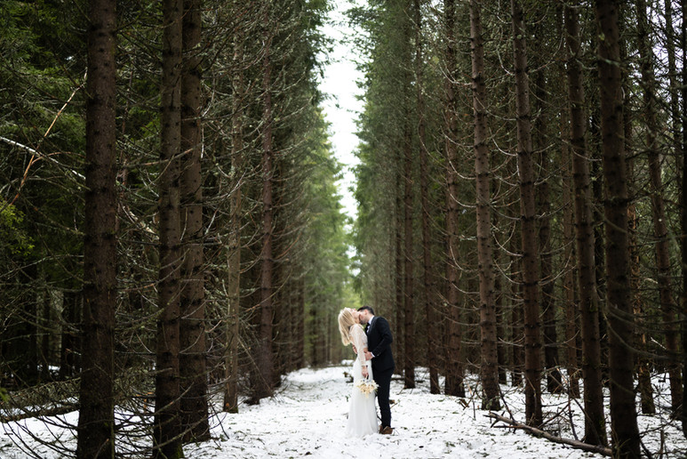DavidZ Photographer Winter Wedding.jpg