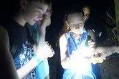 Kids night hike Costa Rica