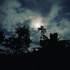 Nighttime in La Flor