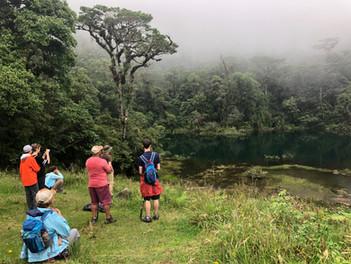 Jungle Lake - Juan Castro Blanco National Park