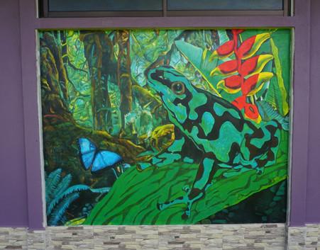 Poision Dart Frog Mural