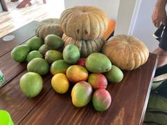 Fresh squash and mangoes