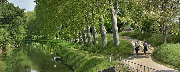 canal 2.jpg