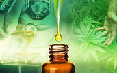 the-8-most-important-cbd-studies-ever-pu