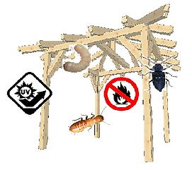 Lesni škodljivci 1.png