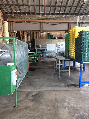 From Field to Consumer: Food Safety and Quality