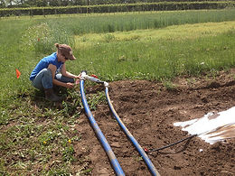 Irrigation Systems and Considerations