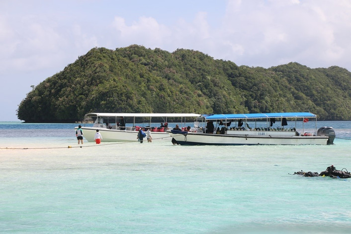 Forecast sees more big drops in Palau's visitor numbers