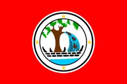 Ngirameketii Wins Second Term For Ngiwal Governor