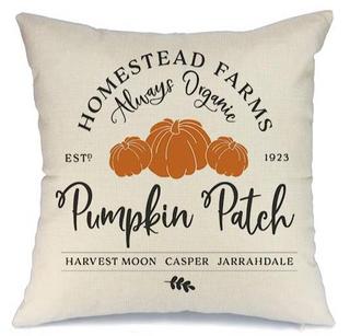 pumpkin pillow cover.png