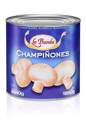 Champiñones 3k