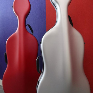 Eggshell cello case Feather: front