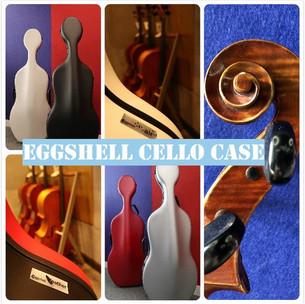 Eggshell cello case