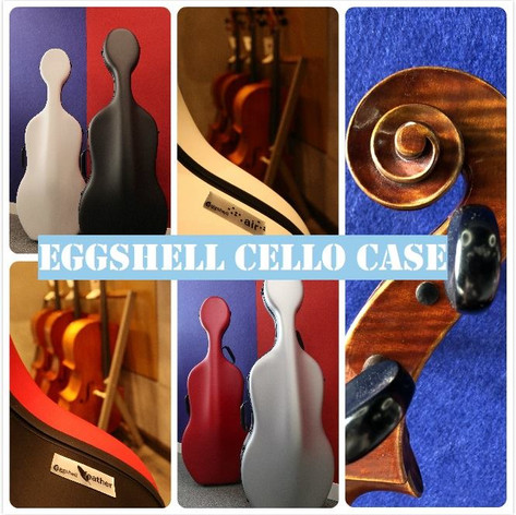 Eggshell cello case