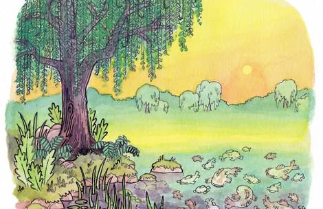 Willows and Koi.jpeg