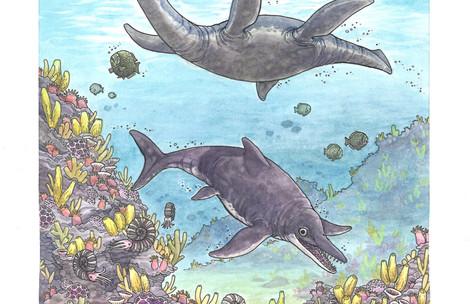 Plesiosaurus & Ichthyosaurus