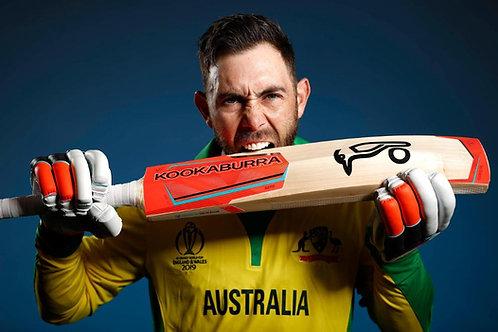 AustraliaPride | Kangroo Silver Fern Southern Cross Men Women Yellow T-Shirt