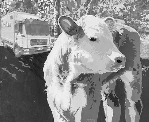 Cow Calf 2016 _ 72dpi _ 1080x897 bitmap