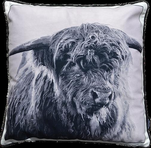 VELVET1a - Highland Cattle 2017 _ 72dpi