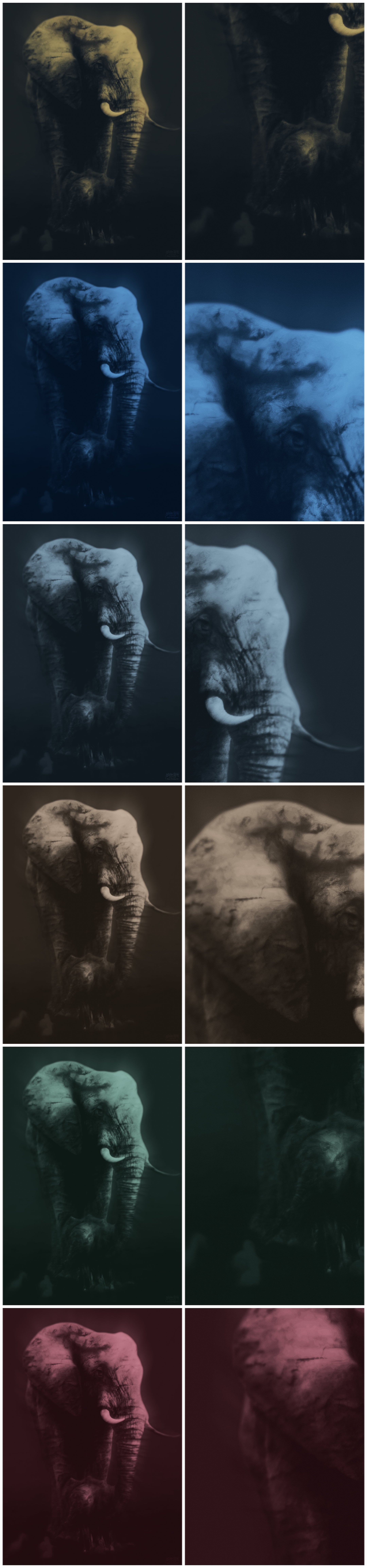The Elephant and her Baby v7 COLLECTION