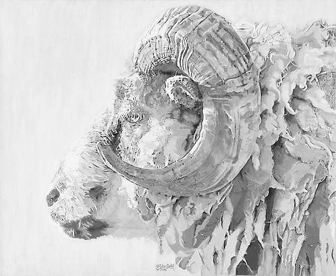 Traditional Sheep 2016 _ 72dpi _ 1080x89