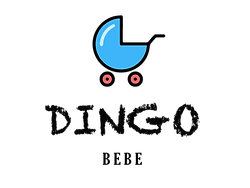 dingo renkli logo.png