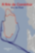 ilha-mare.png