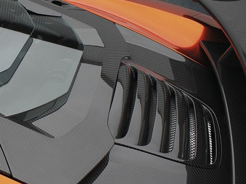 MP4-12c Carbon Fibre OEM Style Rear Boot / Trunk Cover.