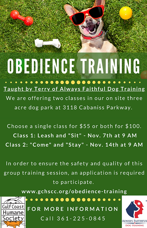 Obedience Training Flyer .png