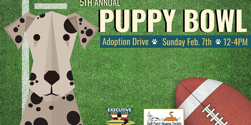 5th Annual Puppy Bowl with Executive Surf Club