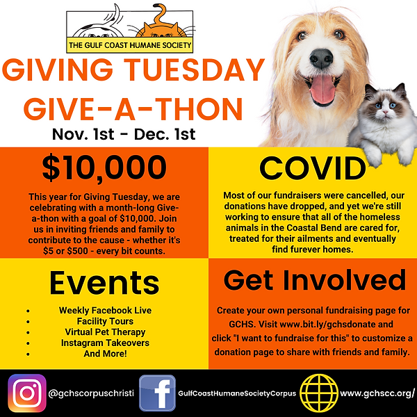 Giving Tuesday Event Flyer (1).png