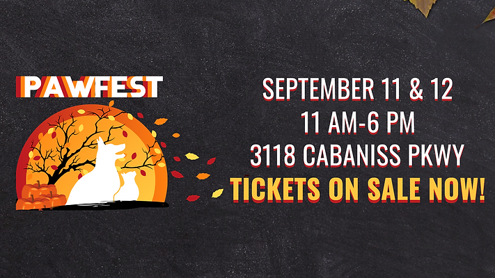 Pawfest Website Banner8.png