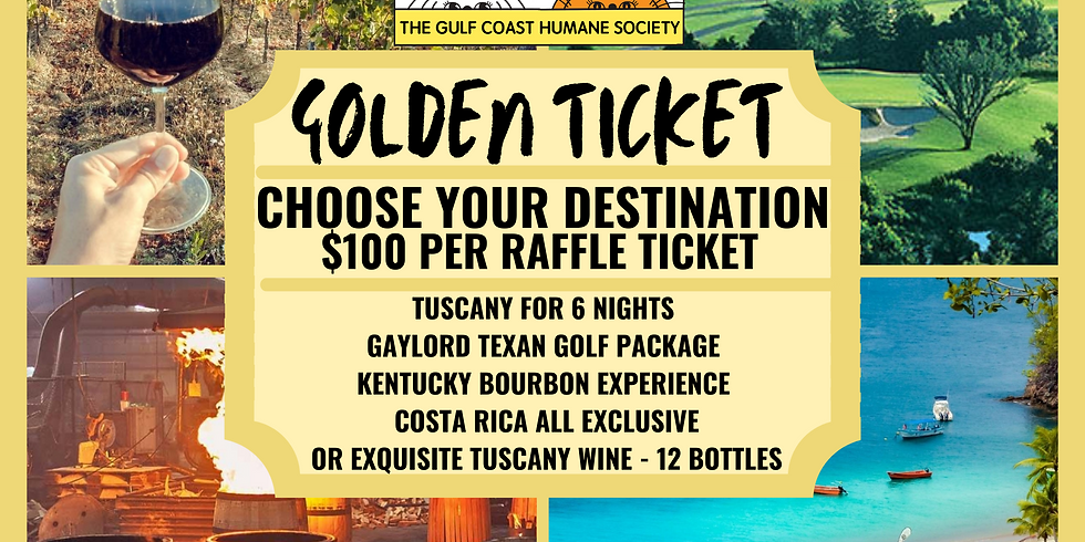 Pawsitive Influences: Golden Ticket Vacation Raffle