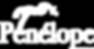 PENELOPE_Logo_blc.png