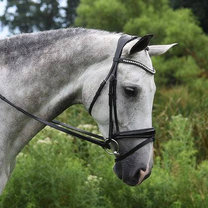 RED BARN PACE DRESSAGE BRIDLE -No reins