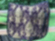 Baroque Provence Dressage.JPG